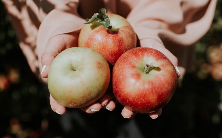 Fermentovaná jablečná přesnídávka s vodním kefírem WUGI