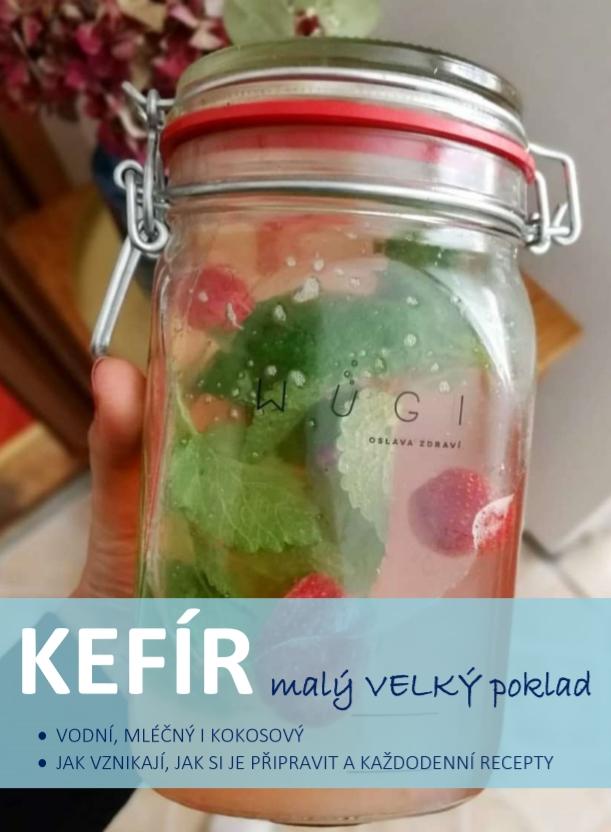 Kefír - malý VELKÝ poklad - vše o vodním, mléčném a kokosovém kefíru - e-book zdarma WUGI