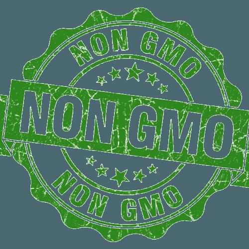 Bez GMO
