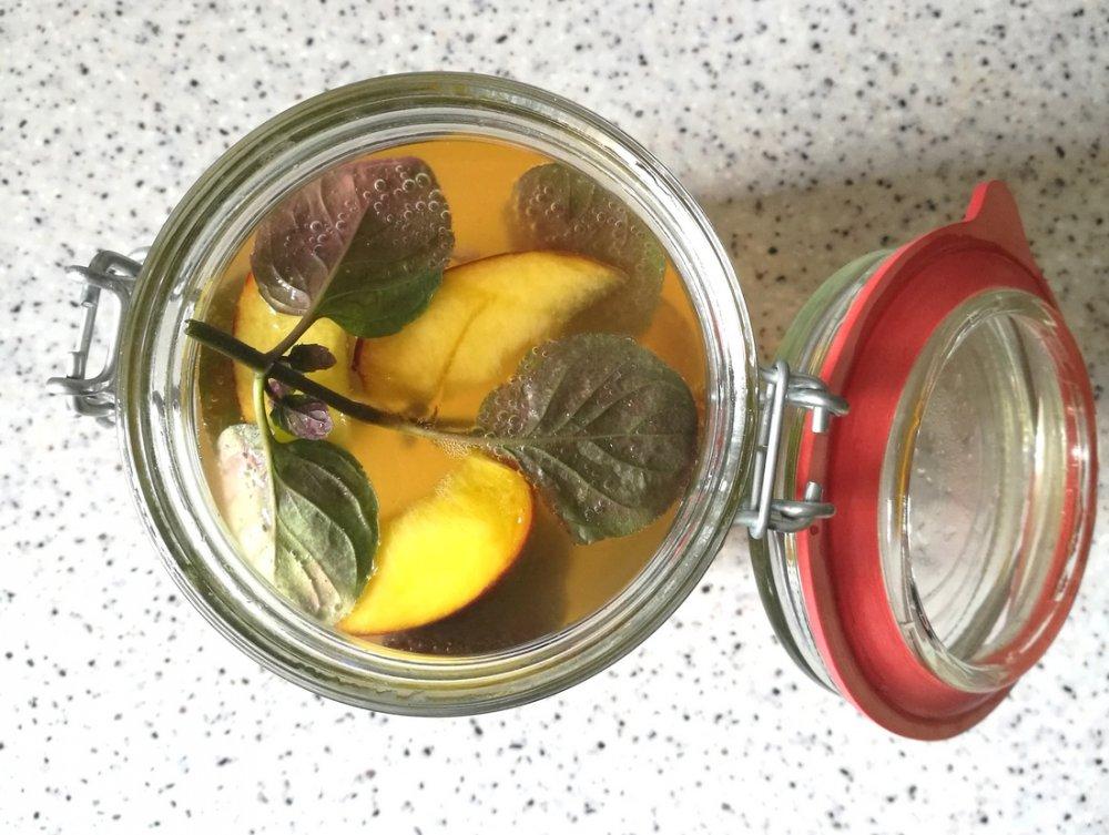 Vodní kefírová limonáda WUGI