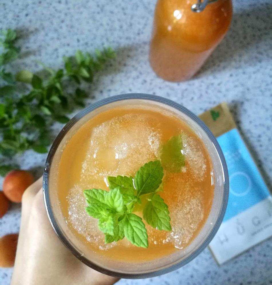 Probiotická meruňková limonáda - WUGI zdravé léto