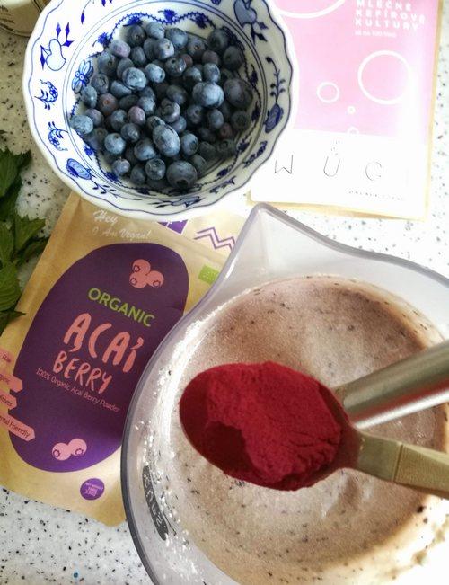 Borůvkovo tvarohová probiotická zmrzlina WUGI