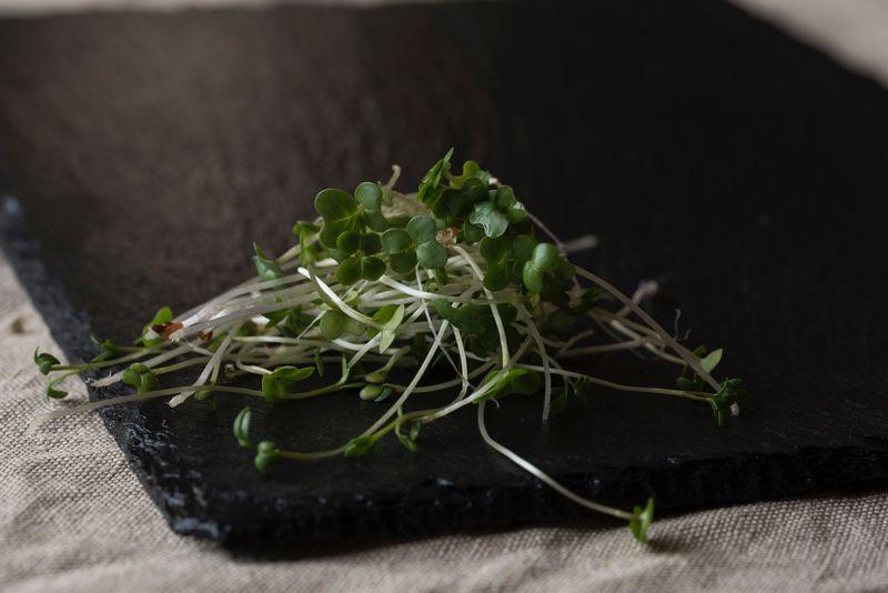 Namáčení, klíčení a fermentování obilovin, luštěnin a ořechů pro snazší trávení - WUGI blog