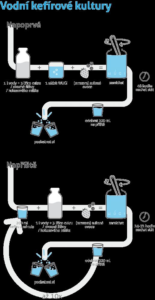 Jak na domácí vodní kefír?